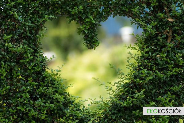 Zielone parafie